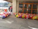 小野小学校の卒業式・入学式に飾られる パンジー花鉢